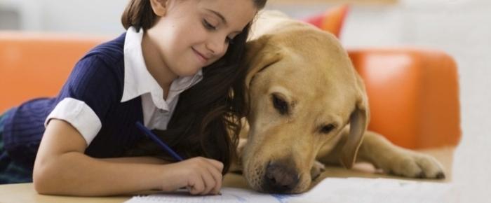 Niña estudia con perro